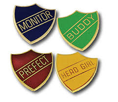 enamelled badges showing status