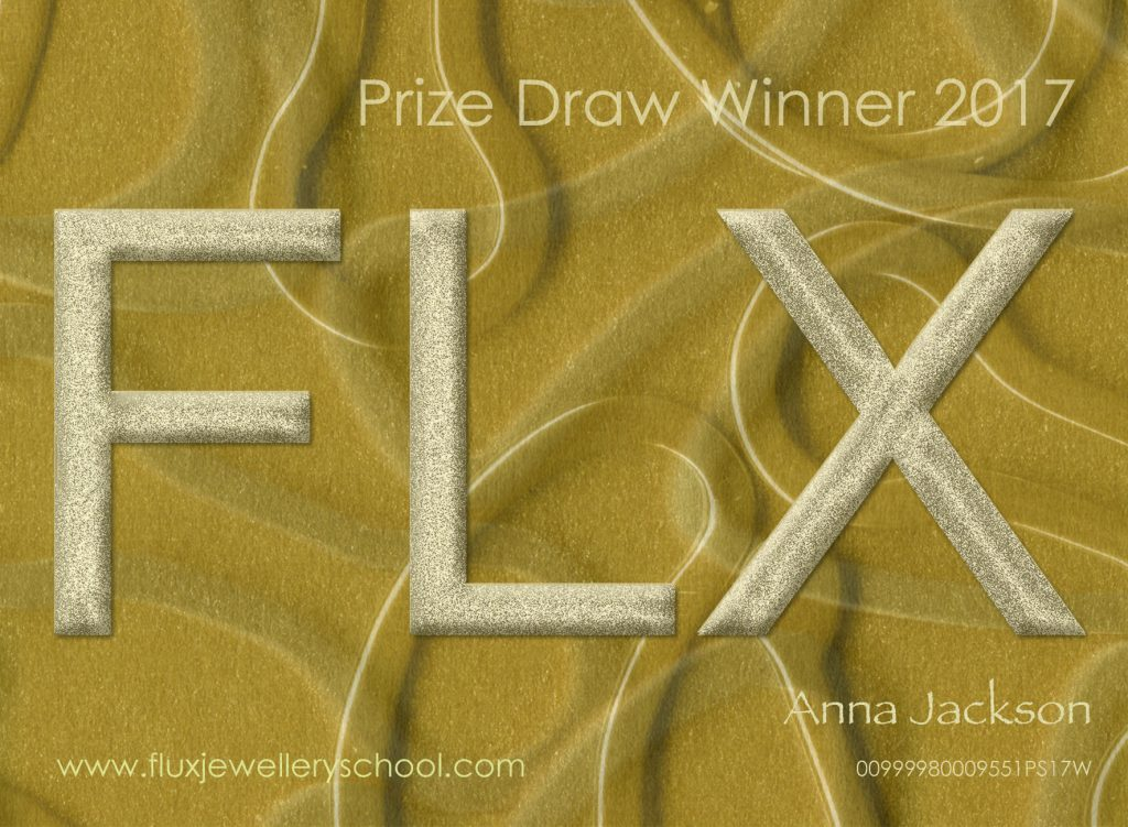 Anna Jackson, third of 3 Flux Prize Draw Winners 2017