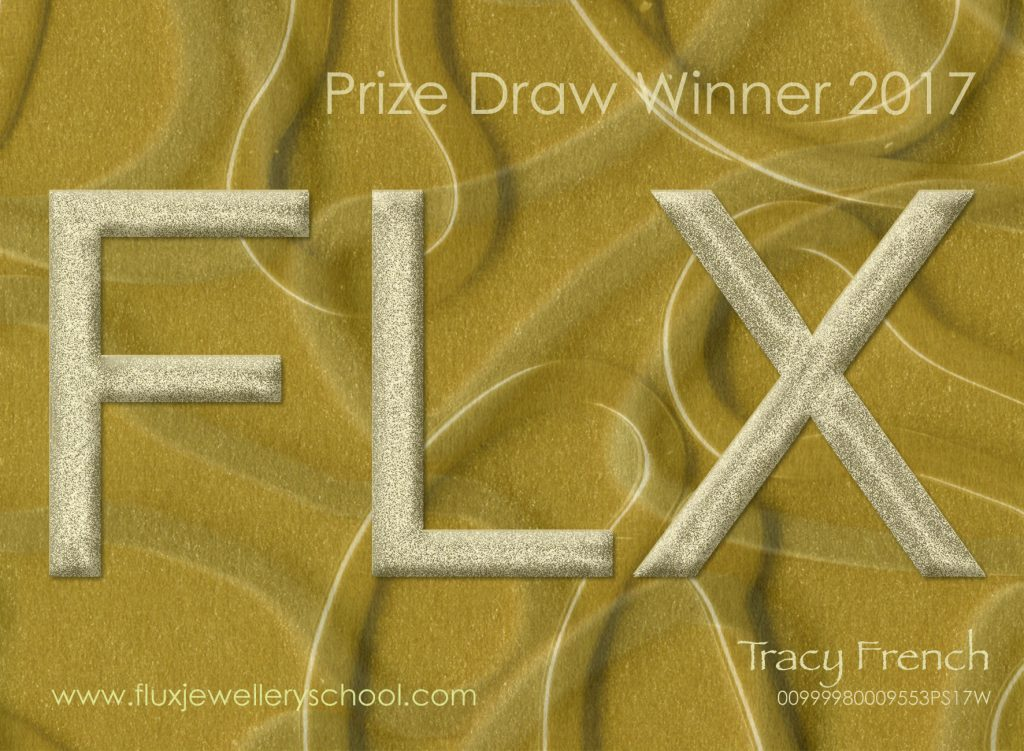Tracey French, second of 3 Flux Prize Draw Winners 2017